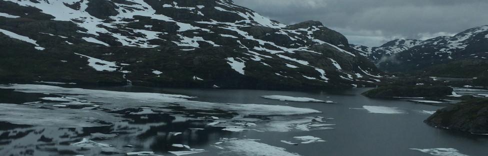 Norway Day 2: Bergensbanen