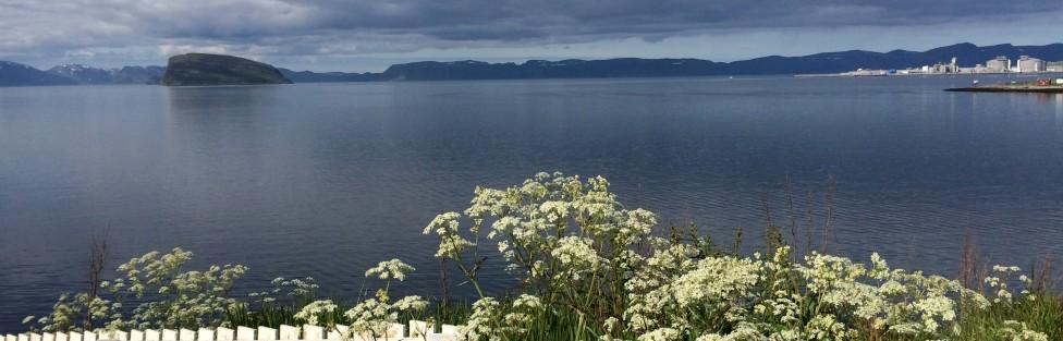 Norway Day 6: Hammerfest