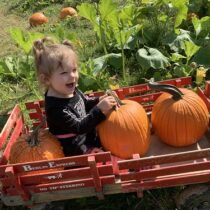 Pumpkin Patch (October)