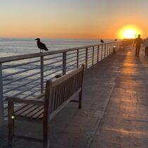 Redondo Beach: Day 1 1