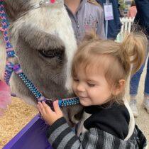 Washington International Horse Show Kids Day aka the best day of Elena's life